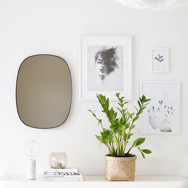 plante verzi in decor scandinav
